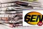 Sport : 11e jeux africains LES LIONNES TOMBENT EN DEMI-FINALE DEVANT LE MALI (62-70)