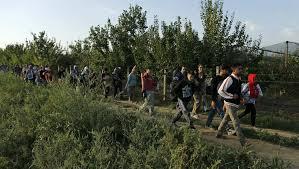 Plusieurs milliers de migrants arrivent en Croatie en l'espace de 24 heures