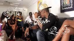 Nouveau Clip De D-Tiger